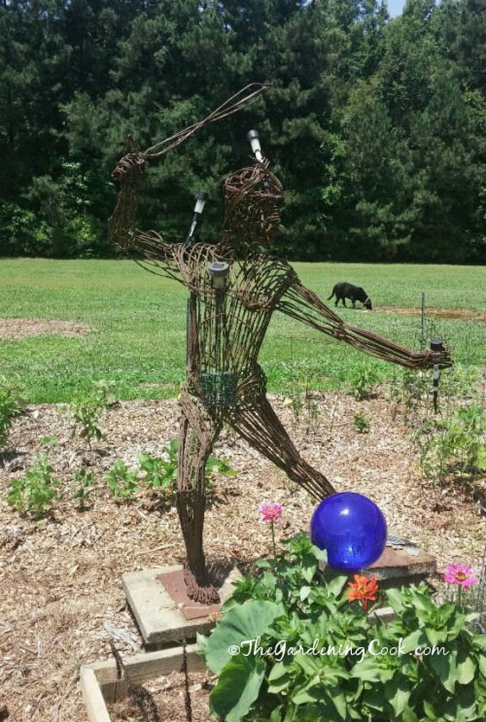 Metal scarecrow with light sensors keep the squirrels away