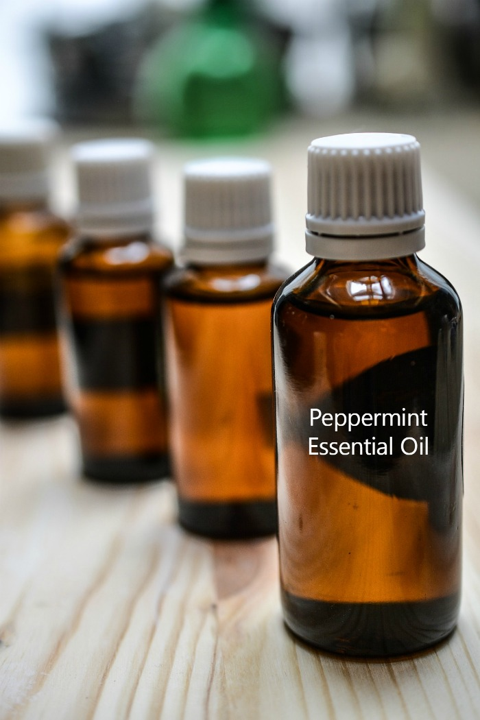 Peppermint essential oil can deter squirrels