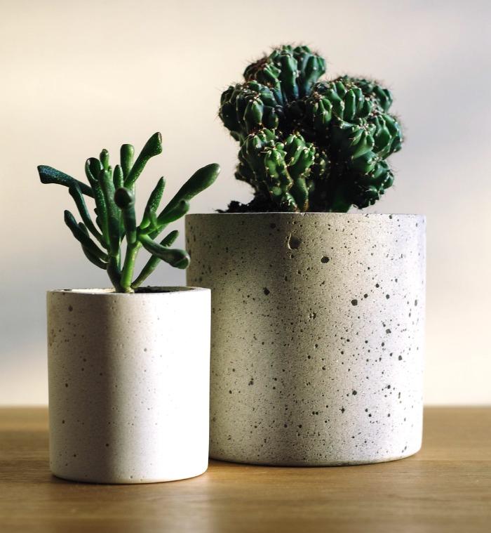 Succulent round cement planters
