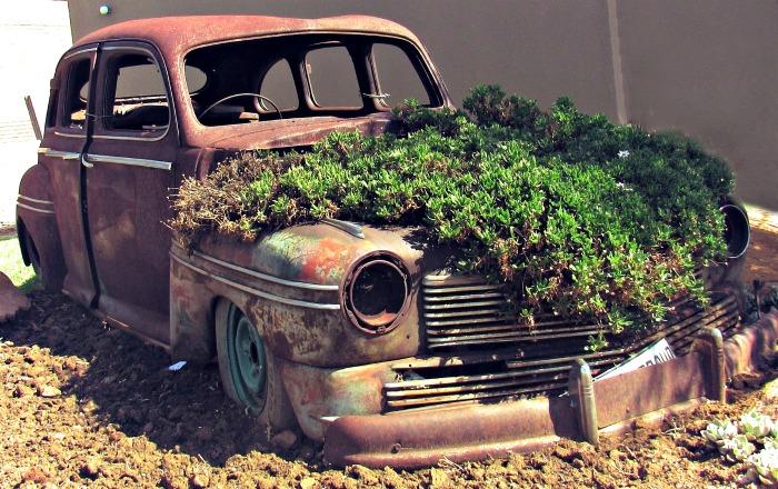 Old car Succulent planter