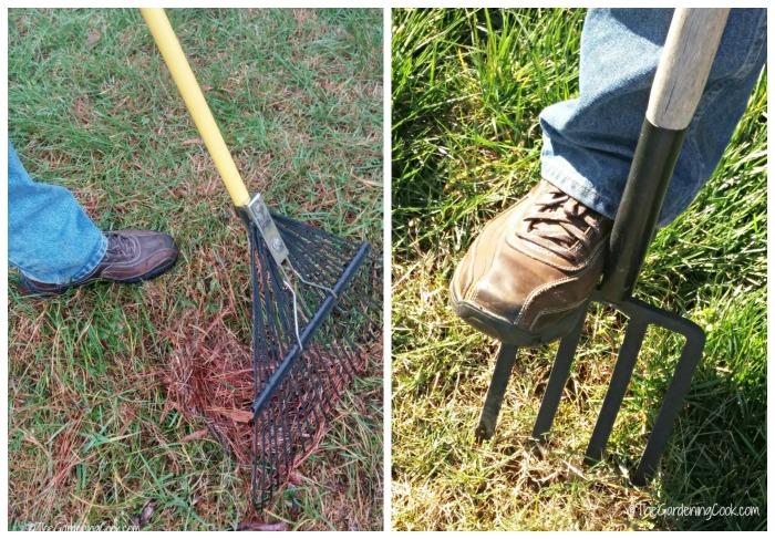 Raking and aerating a lawn