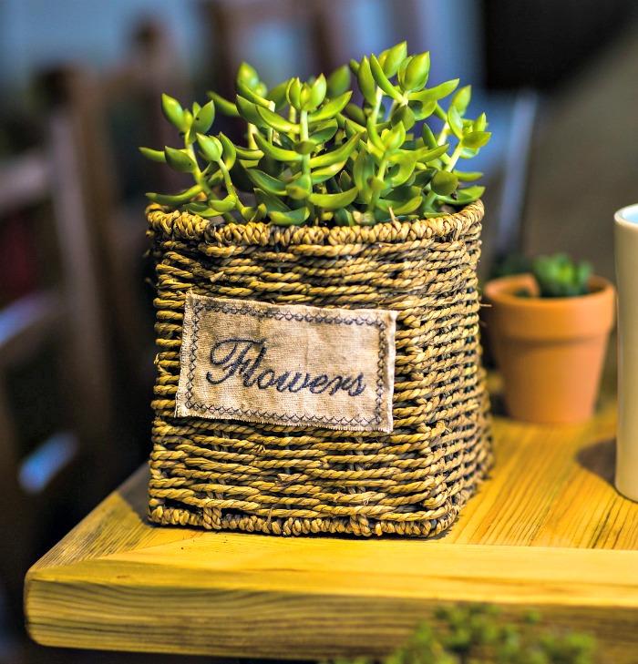 Rattan basket Succulent planter