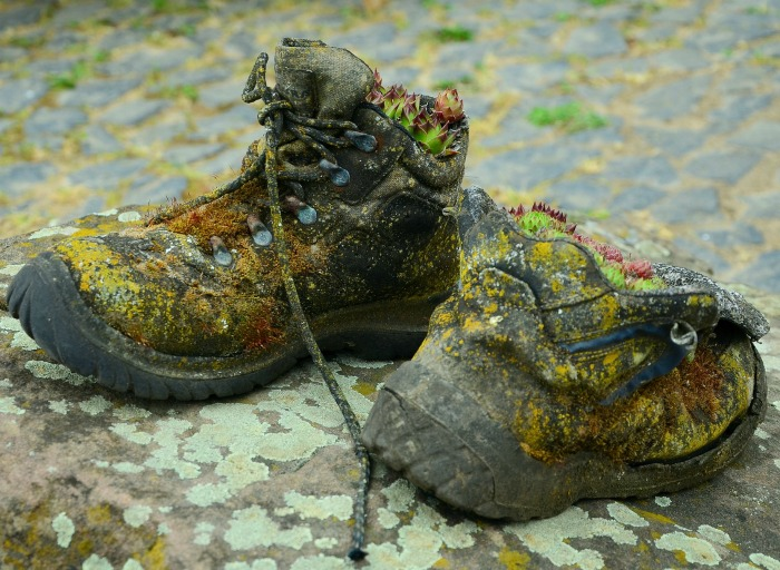 Old boots Succulent planter