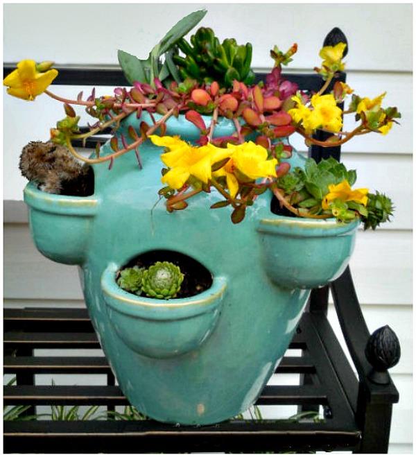 Blue strawberry pot Succulent planter