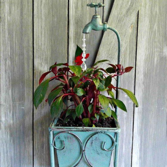 Planted New Guinea impatiens