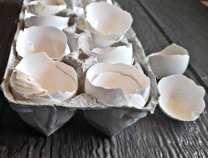 Cracked eggs for quiche