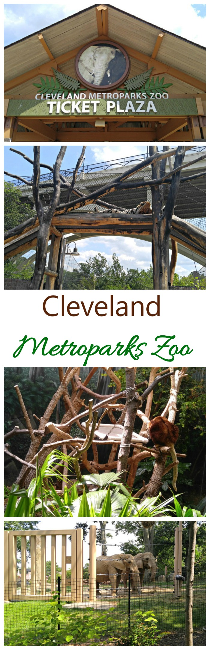 The Cleveland Metroparks Zoo is home to 3000 animals and over 10,000 plants
