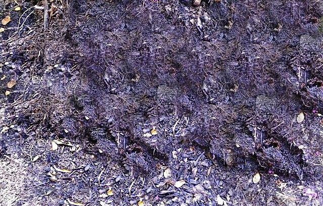 Rolling compost pile