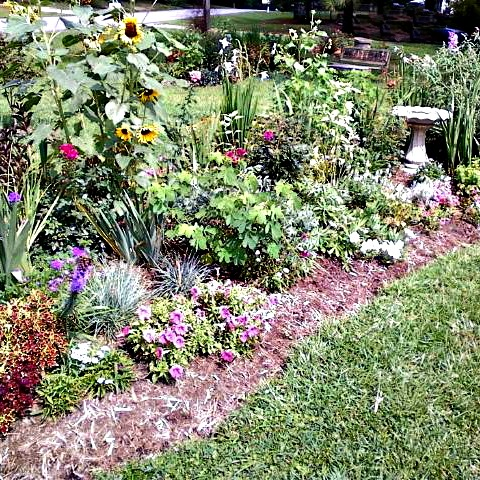 Cottage garden bed with birdbath