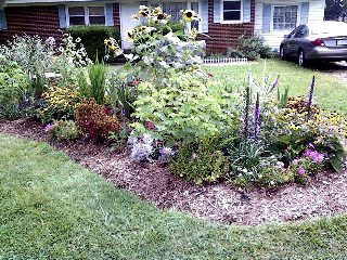 The Gardening Cook welcomes you to a lovely garden bed