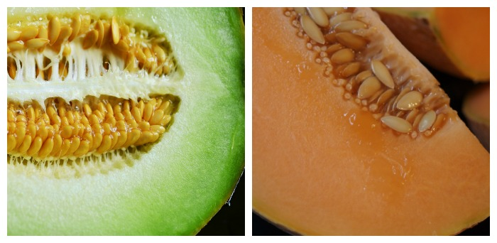 Flesh of honeydew and cantaloupe melons