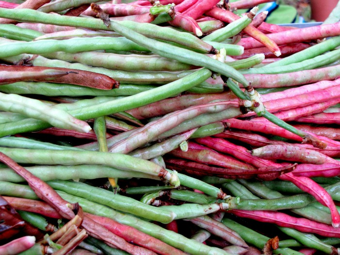 Bush and pole beans come in many colors