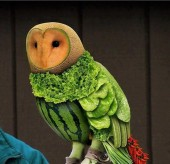 Owl carved from fruit