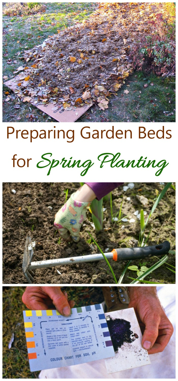 Preparing Spring Flower Beds Leaf Mulch Soil Testing Lasagna
