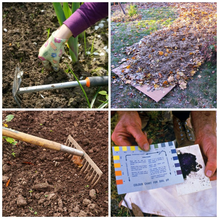 Get your garden beds ready for spring