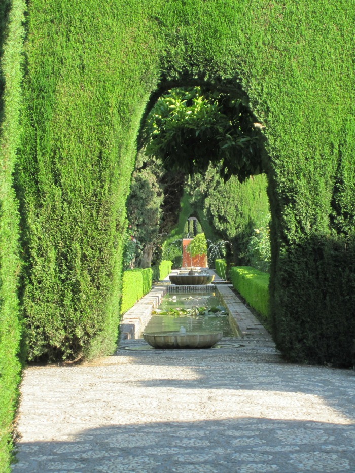 Alhambra cypress hedge trimmed into a garden arch