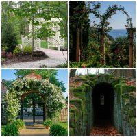 Arbors for the garden