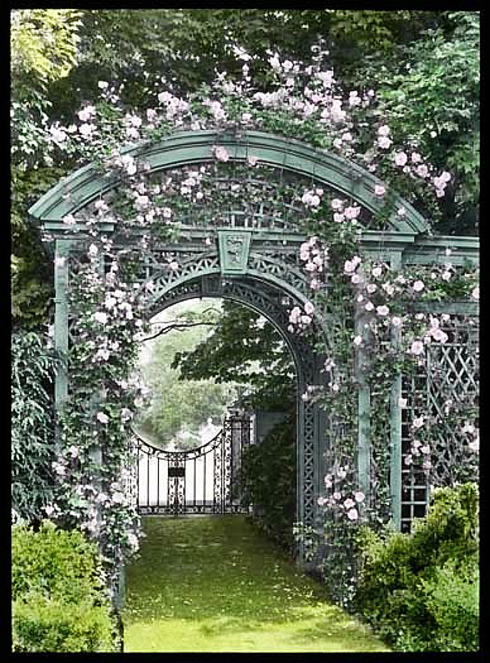 Arched metal arbor