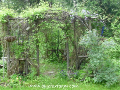 Rustic Arbor and Pergola