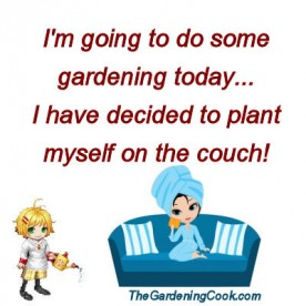 planting on couch