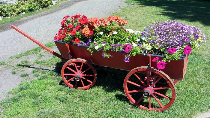 wagon recycled into a garden planter