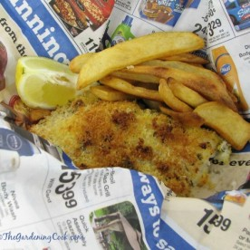 "Slimmed down ""fish and chips"""