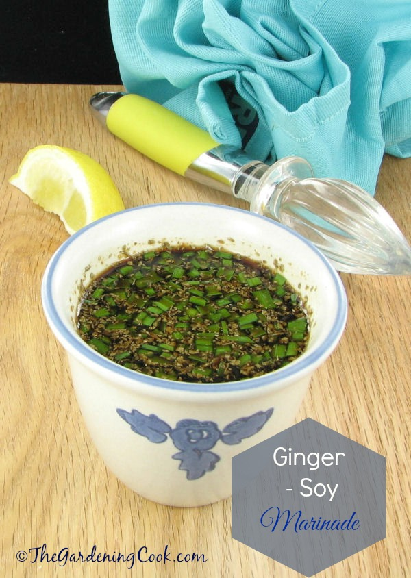 Ginger soy marinade is perfect for all types of meat and fish.