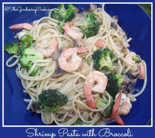 Shrimp pasta with broccoli
