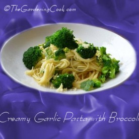 Creamy Garlic Pasta with Broccoli