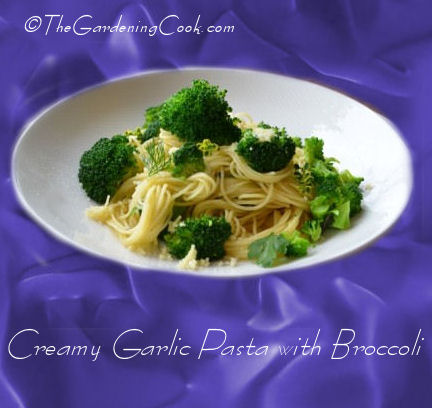 Creamy Garlic Pasta with Broccoli