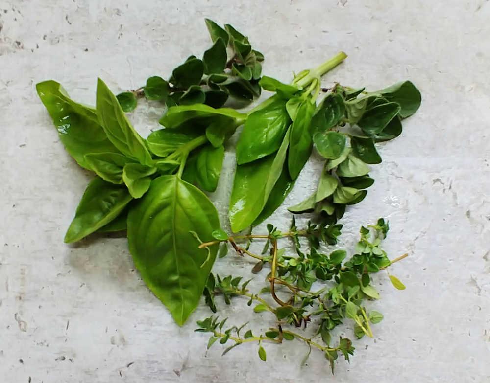 Albahaca fresca, orégano y tomillo en una encimera.