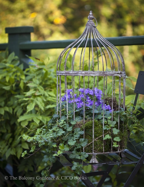 bird cage planters diy projects decorative and unusual. Black Bedroom Furniture Sets. Home Design Ideas
