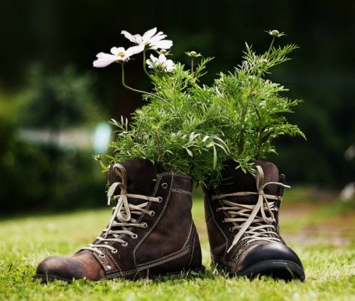 Pair of boots with annuals