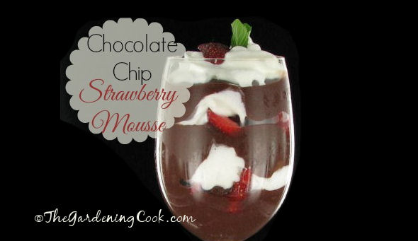 Strawberry chocolate mousse with extra crunch
