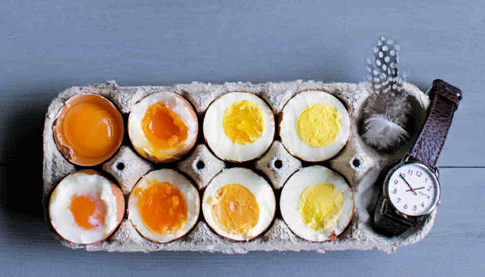 Eggs in a carton from raw through to hard boiled with a watch and feather.