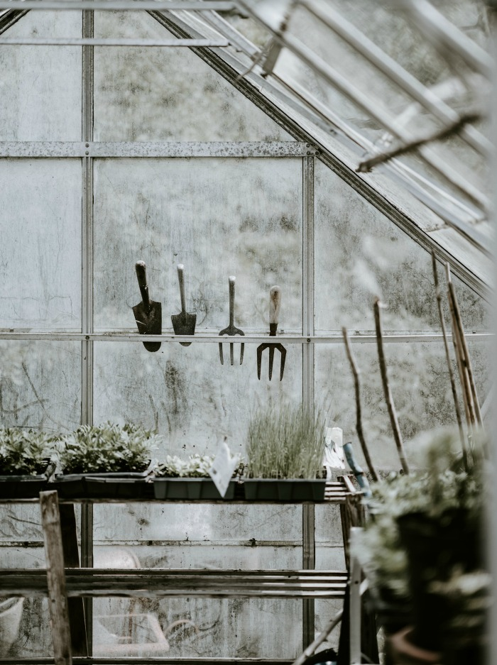Homemade Greenhouse Ideas - Make one today!