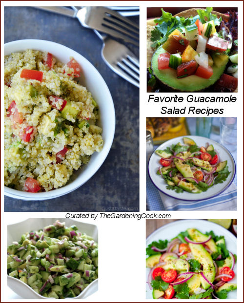 Round up of my Favorite guacamole salads.