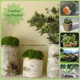 Logs of all types repurposed as planters