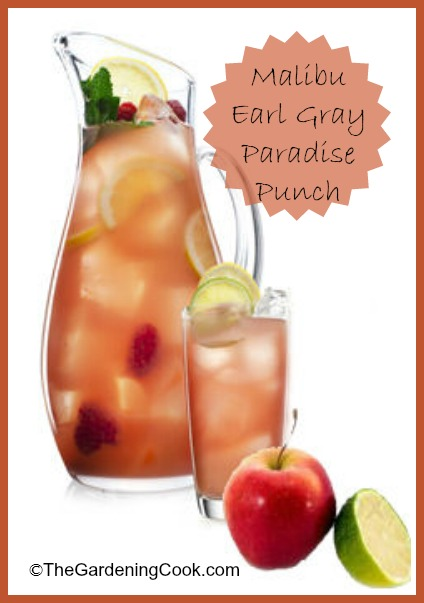 Malibu Earl Gray Paradise Punch -The Gardening Cook on tee clamp, tee sign, tee bow,