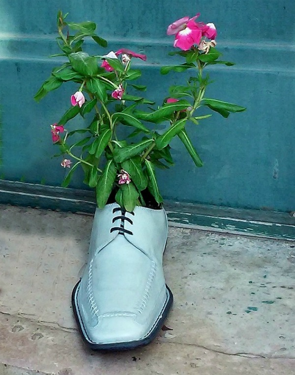 Mans dress shoe planter