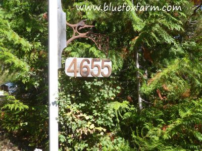 House numbers with a back drop of greenery