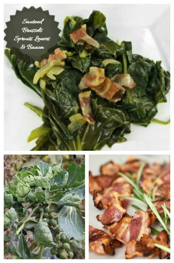 Sauteed Brussels Sprout Leaves with bacon