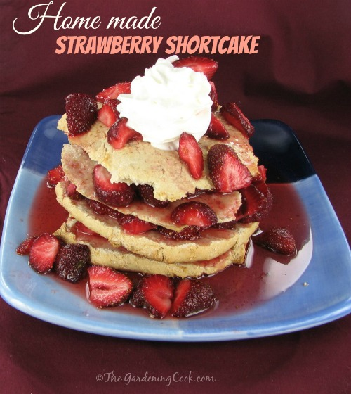 Four layer fresh strawberry shortcake with whip cream and words reading Homemade strawberry shortcake.