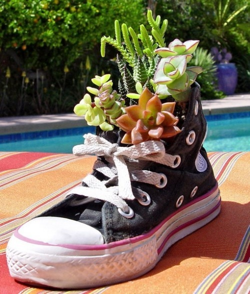 Tennis shoe planter