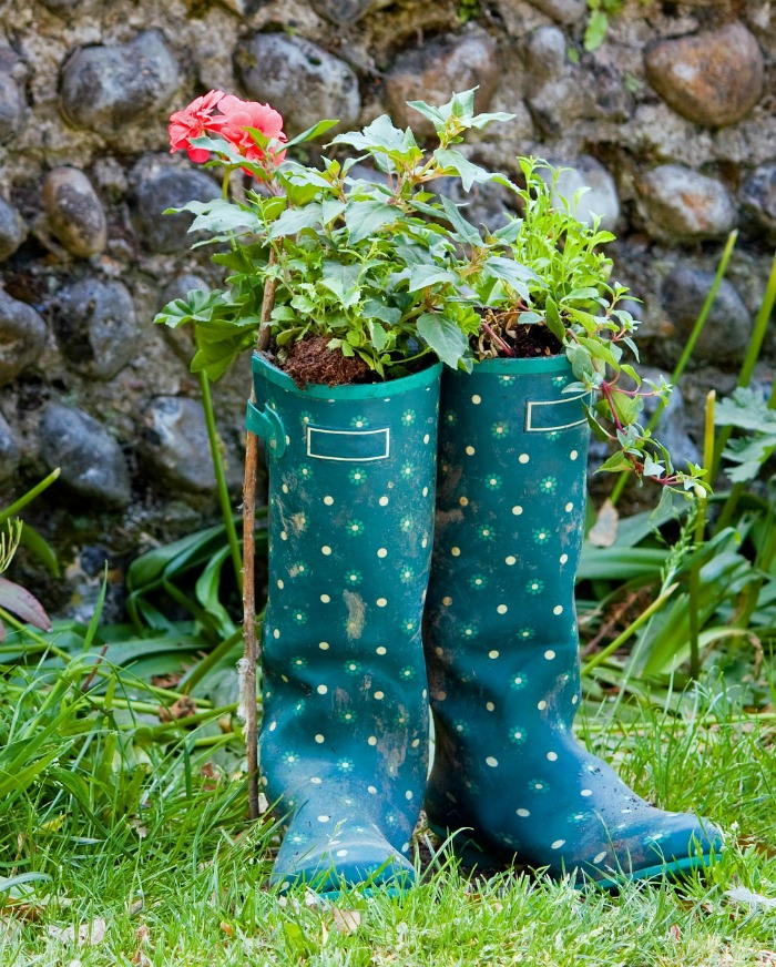 Wellington boot planters