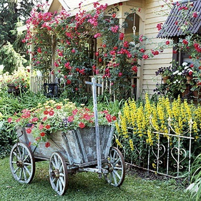 Goat cart with petunias and yellow daisies