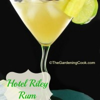Hotel riley cocktail