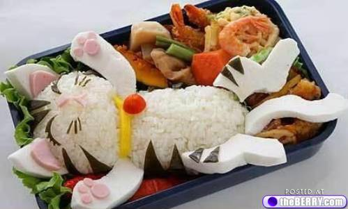Kitty Food plate