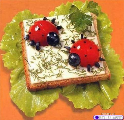 Lady bugs in a sandwich
