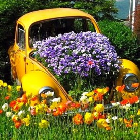 VW bug car planter